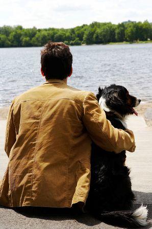 Origen de la frase ''El perro es el mejor amigo del hombre''